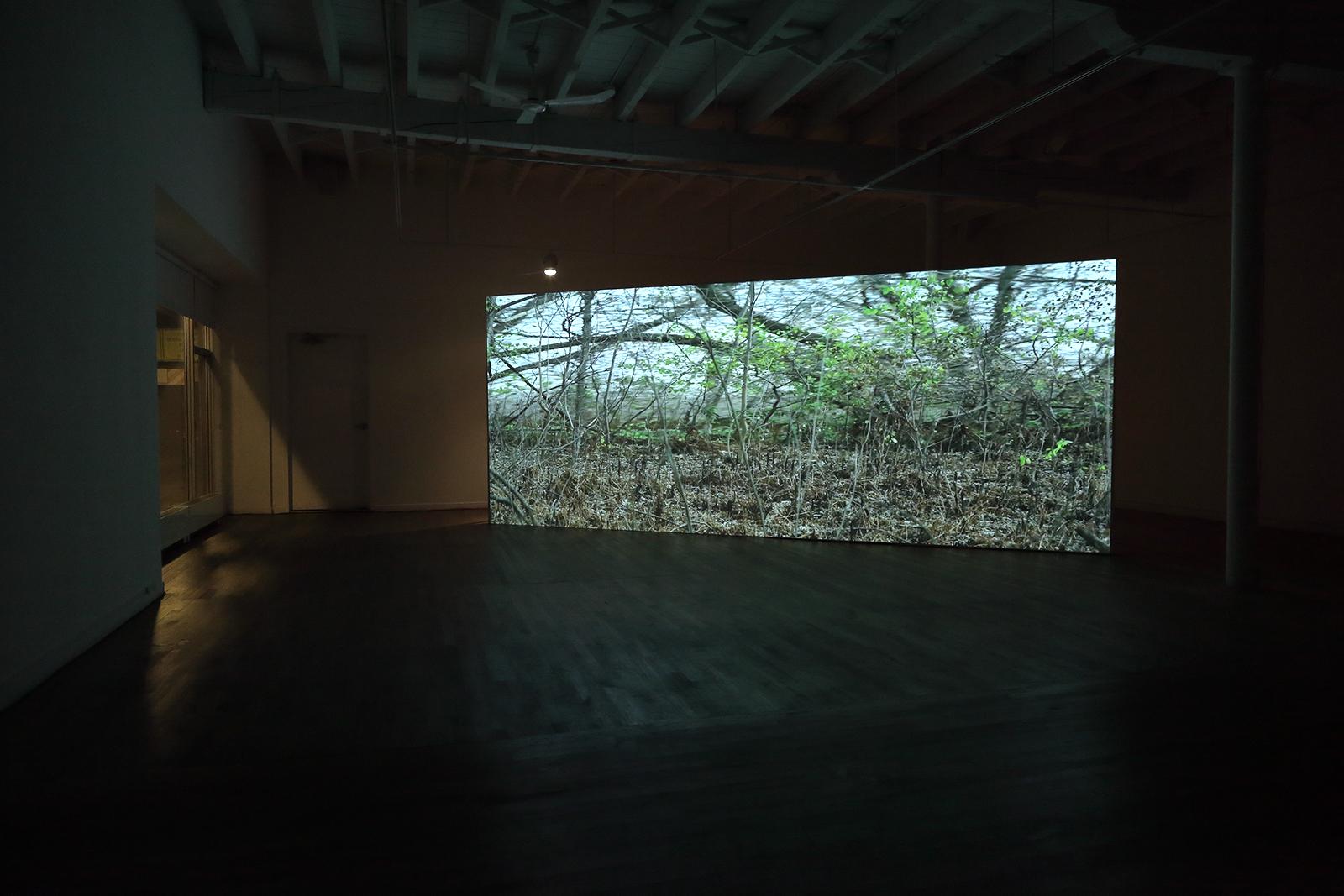 Videoinstallation @ Sporobole / Rainer Gamsjaeger 2015